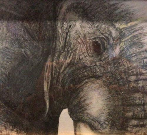 Matambu drawing